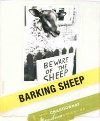 barking sheep chardonnay