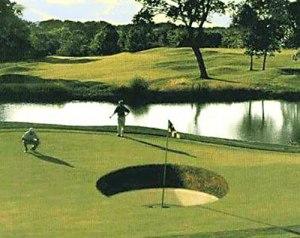 Funny-Golf-25
